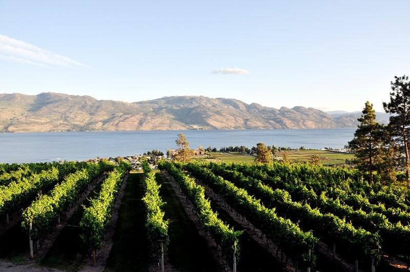 Okanagan Valley Wine Country